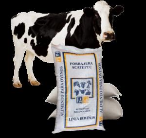 vaca_costal